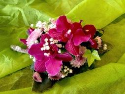 Ochideenblatt