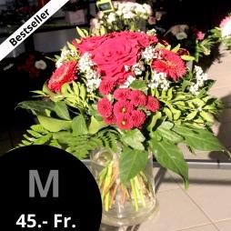 Grösse M à 45.- Fr.