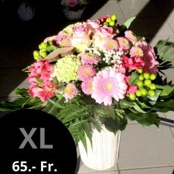 Grösse XL à 65.- Fr.