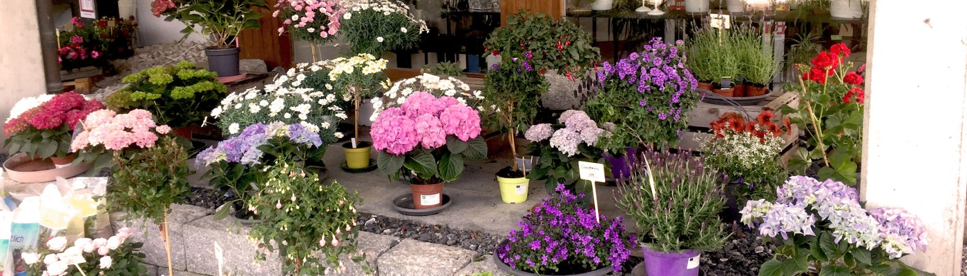 Blumenladen Eingang