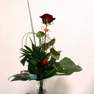 1. Rose ausgarniert 15.- Fr.